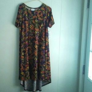 Lularoe Fall dress NWT size S